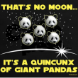 Alien Pandas